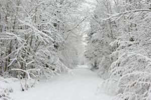 Сонник снег во сне сугробы