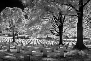 сонник видеть во сне кладбище