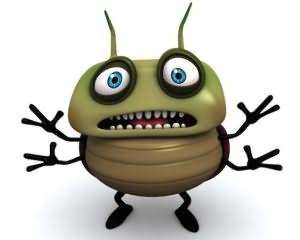 к чему снится жук