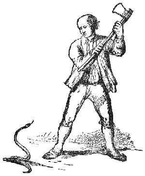 сонник убить змею во сне