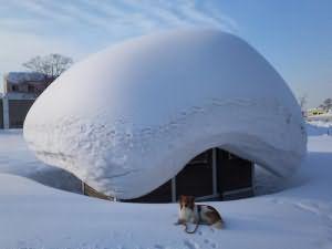 к чему снится что выпал снег