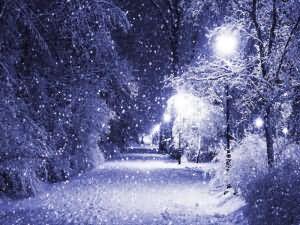 сонник зима не в сезон