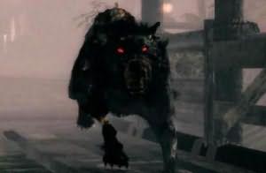 большая черная собака во сне