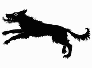 увидеть во сне черную собаку