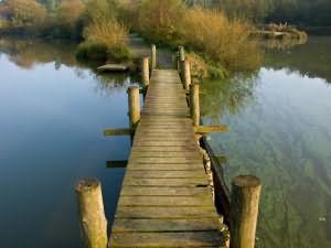 к чему снится деревянный мост