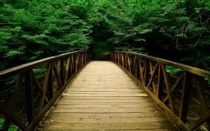 мост во сне переходить