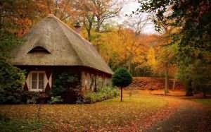к чему снится старый дом бабушки
