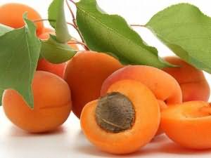 сонник абрикос