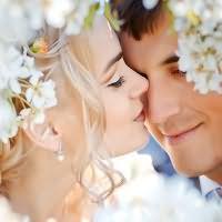 если снится свадьба