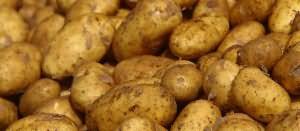 К чему снится картофель