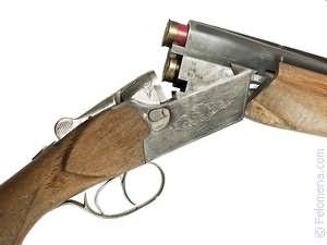 стрелять из Ружья по соннику