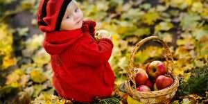 к чему снится собирать яблоки