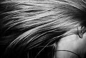 Сонник волосы на лице, к чему снятся  волосы на лице во сне