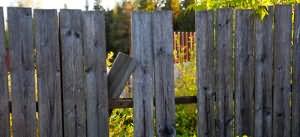 забор во сне