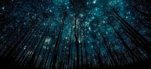 сонник звездное небо